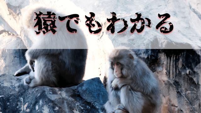 猿は差別をしない